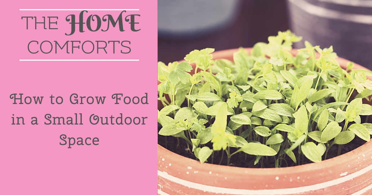 How to Grow Food in a Small Outdoor Space
