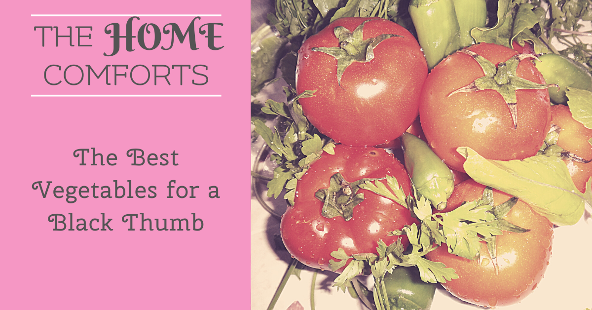 The Best Vegetables for a Black Thumb